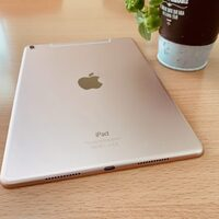 Apple iPadPro9.7